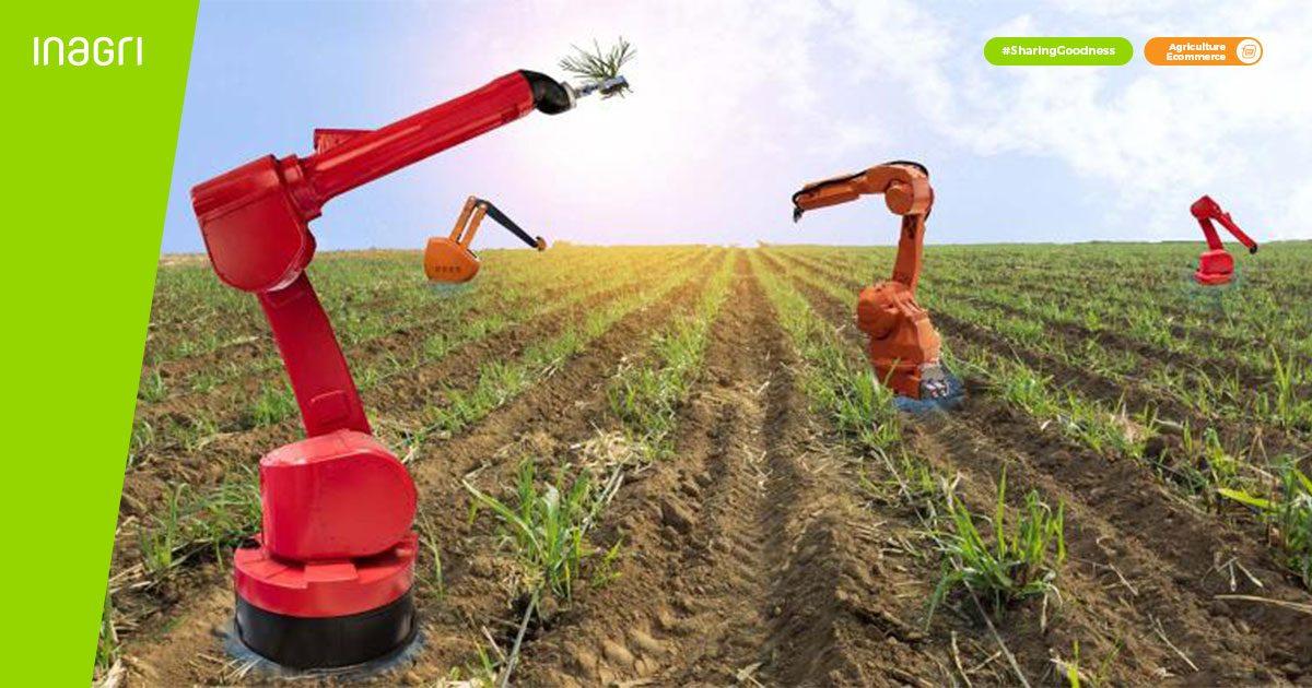 pengaruh inovasi pada pertanian