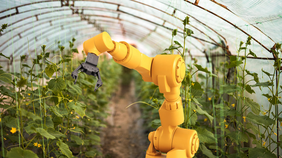 otomatisasi perawatan pertanian dengan robot